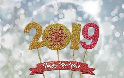 2018-danico-happy-new-year
